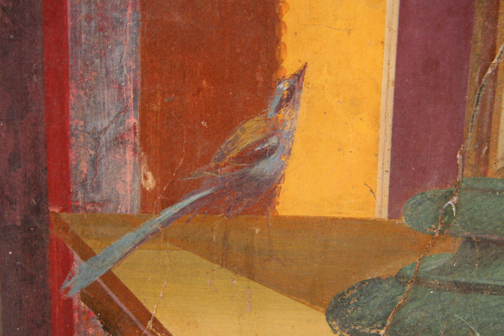 Fresco bird in the Oplontis Villa near Pompeii