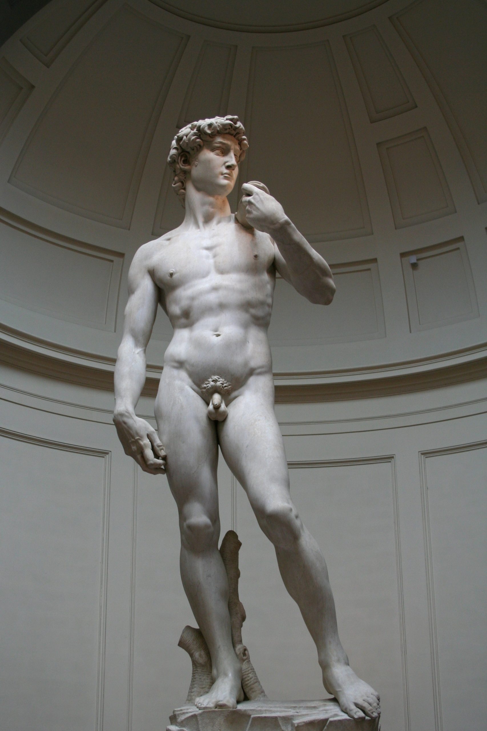 2007, Michelangelo, David, Florence, Italy