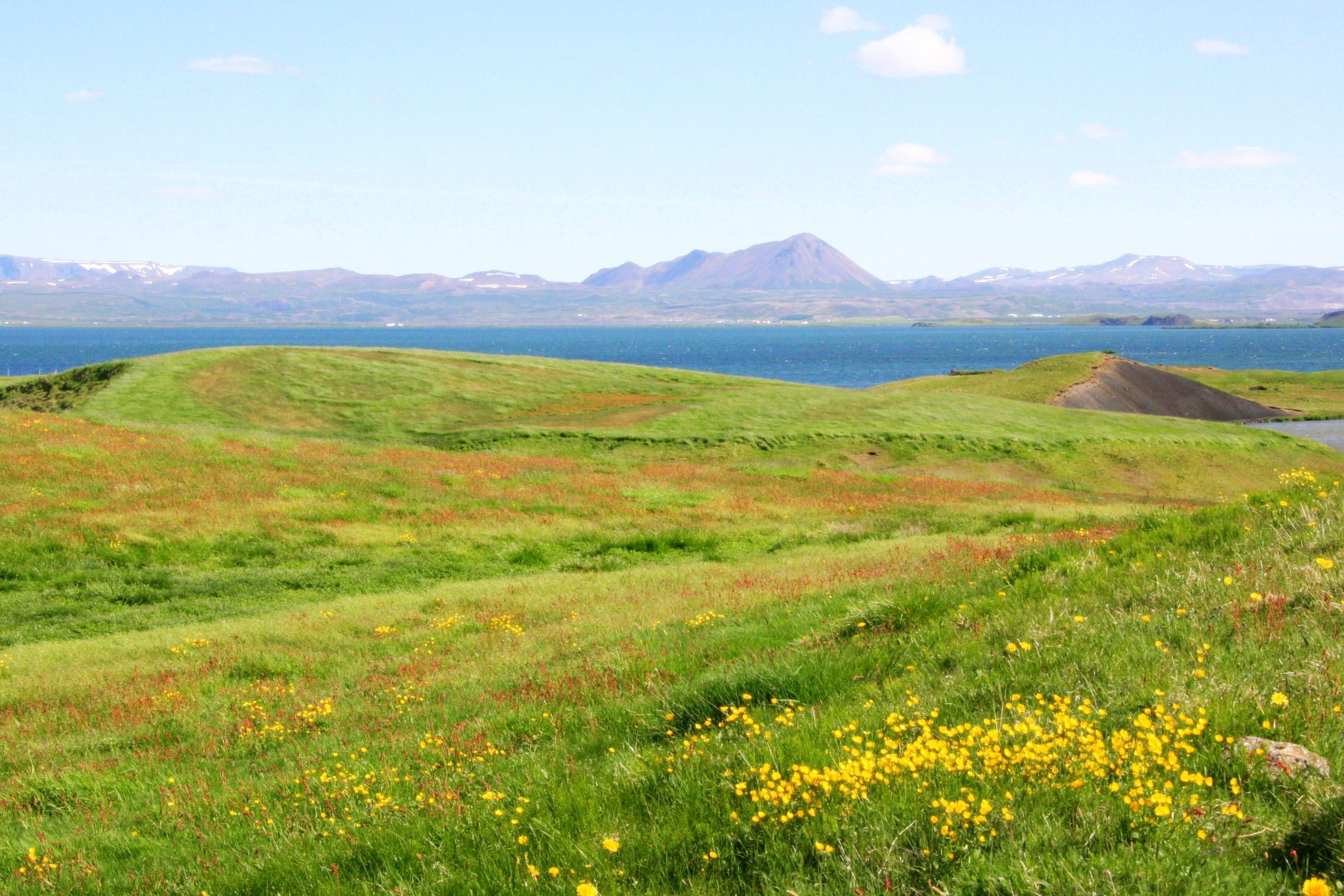 2010, Myvatn Lakes, Iceland