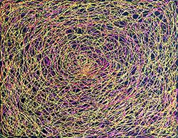 Intergalactic Bloom 250
